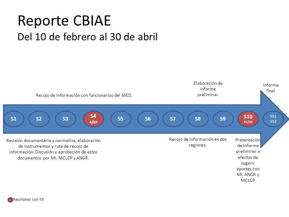 Reporte CBIAE Del 10 de febrero al 30 de abril S1S2S3 S4 4/03 S5S6S7S8S9 S10 15/03 S11 S12 Revisión documentaria y normativa, elaboración de instrumentos y ruta de recojo de información.
