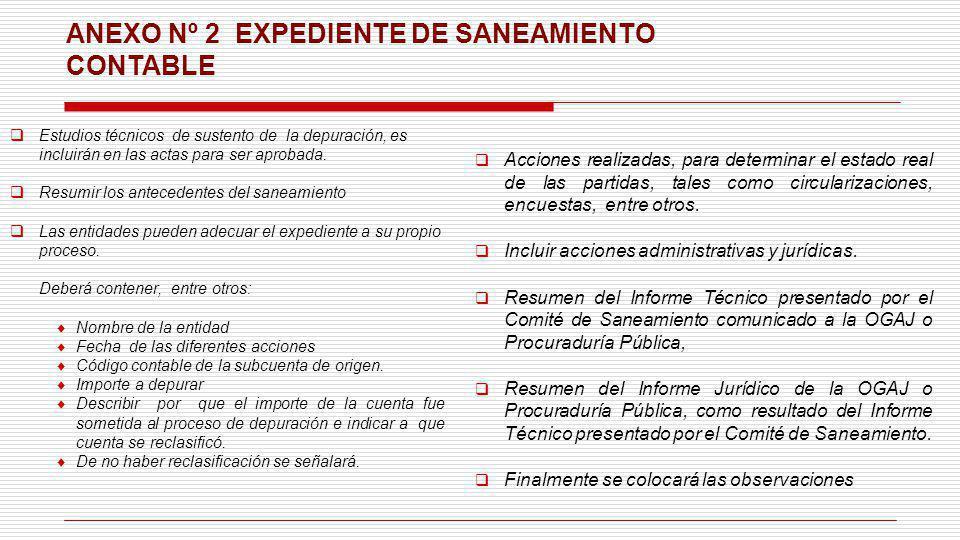 ANEXO Nº 2 EXPEDIENTE DE SANEAMIENTO CONTABLE Estudios técnicos de sustento de la depuración, es incluirán en las actas para ser aprobada. Resumir los