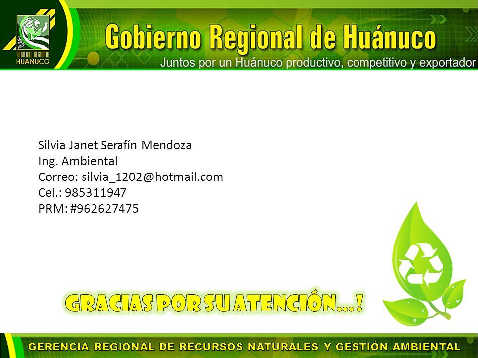 Silvia Janet Serafín Mendoza Ing.