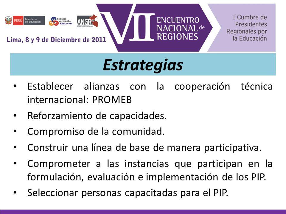 Estrategias Establecer alianzas con la cooperación técnica internacional: PROMEB Reforzamiento de capacidades.