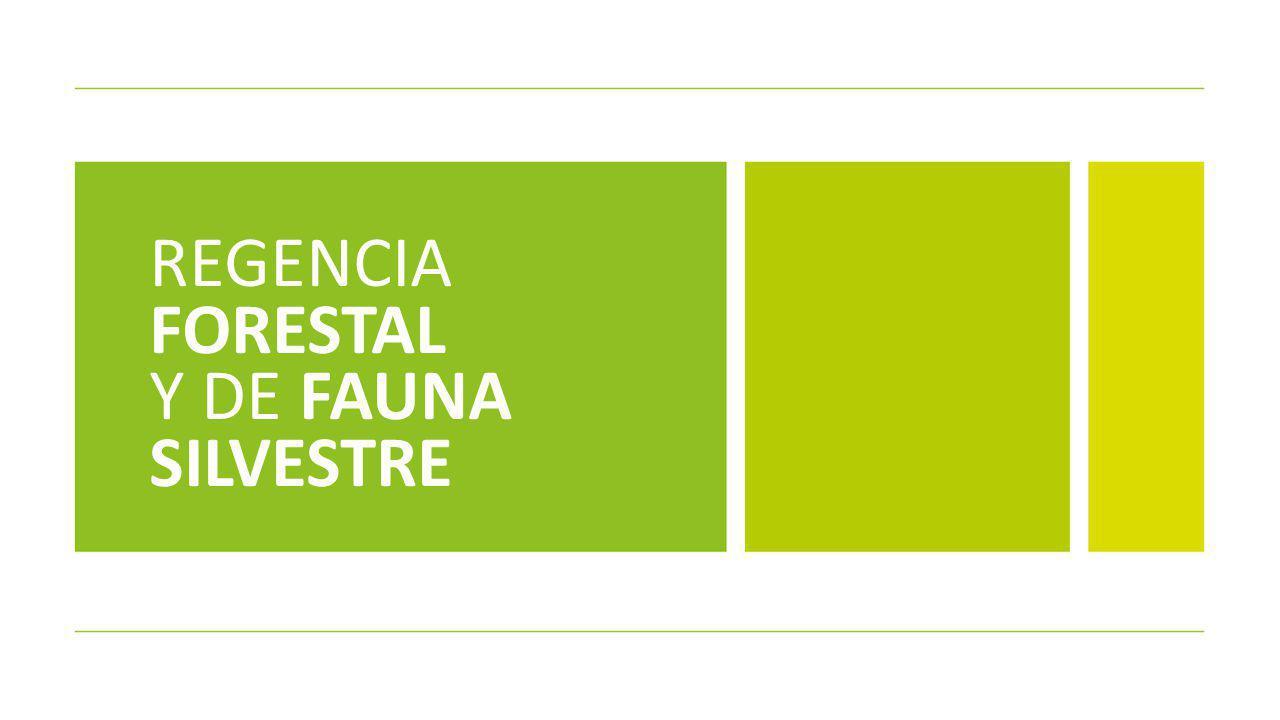 REGENCIA FORESTAL Y DE FAUNA SILVESTRE