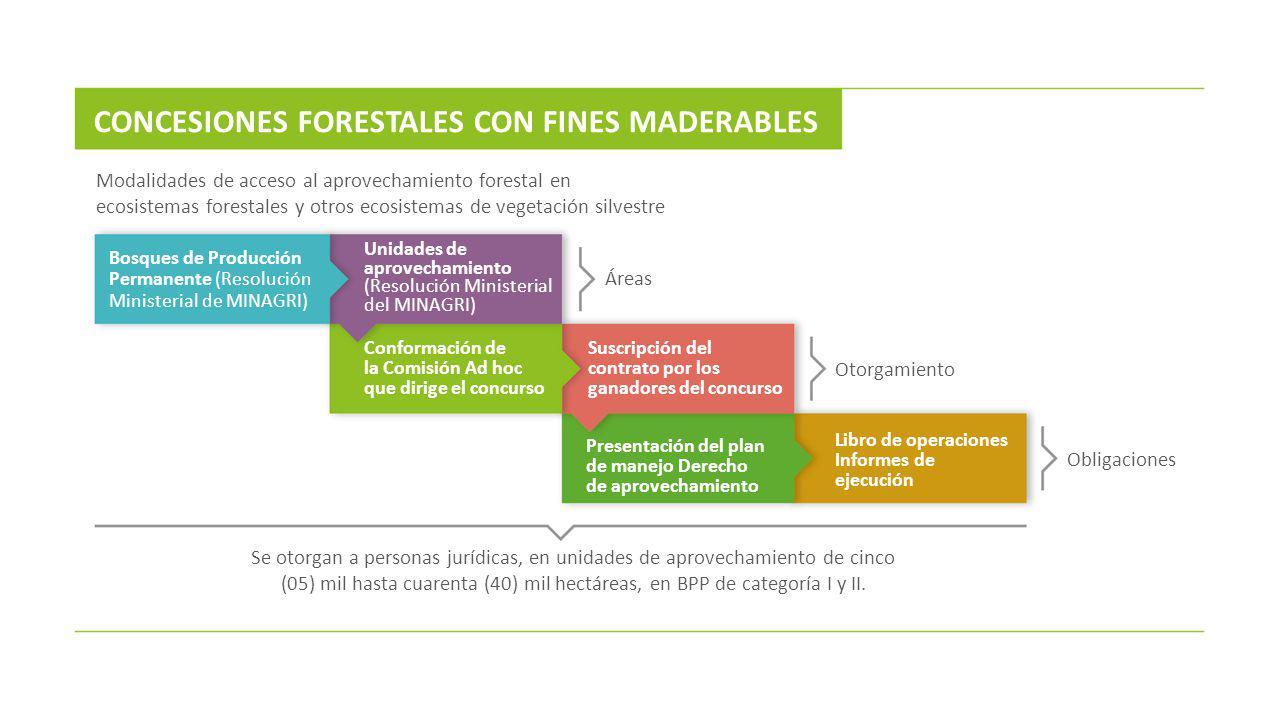 Modalidades de acceso al aprovechamiento forestal en ecosistemas forestales y otros ecosistemas de vegetación silvestre CONCESIONES FORESTALES CON FIN