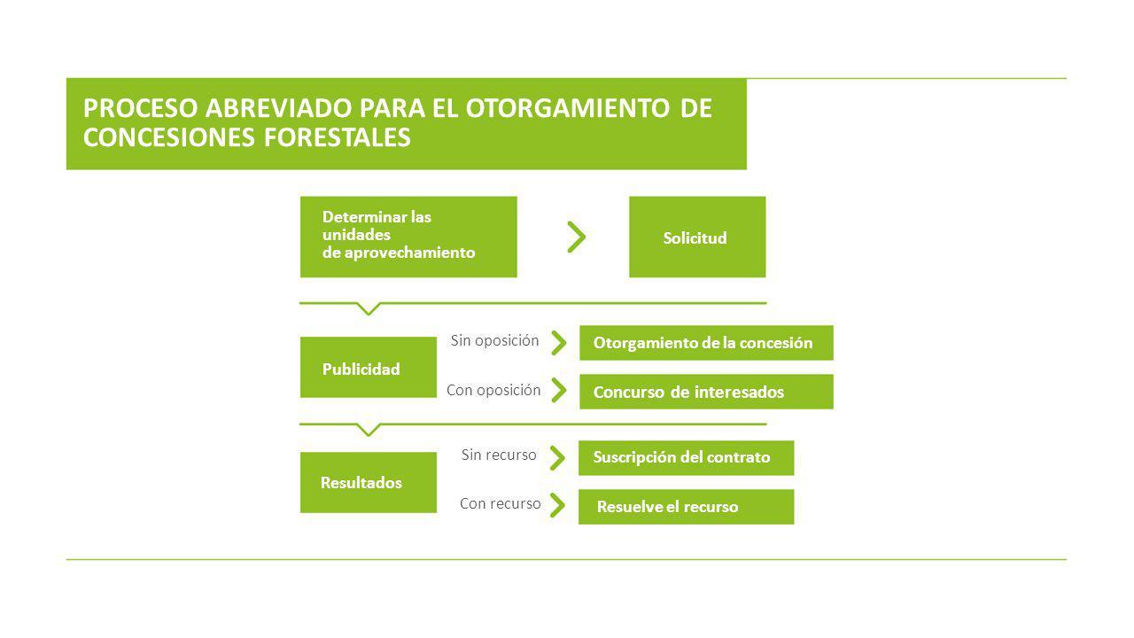 PROCESO ABREVIADO PARA EL OTORGAMIENTO DE CONCESIONES FORESTALES Determinar las unidades de aprovechamiento Solicitud Publicidad Resultados Otorgamien