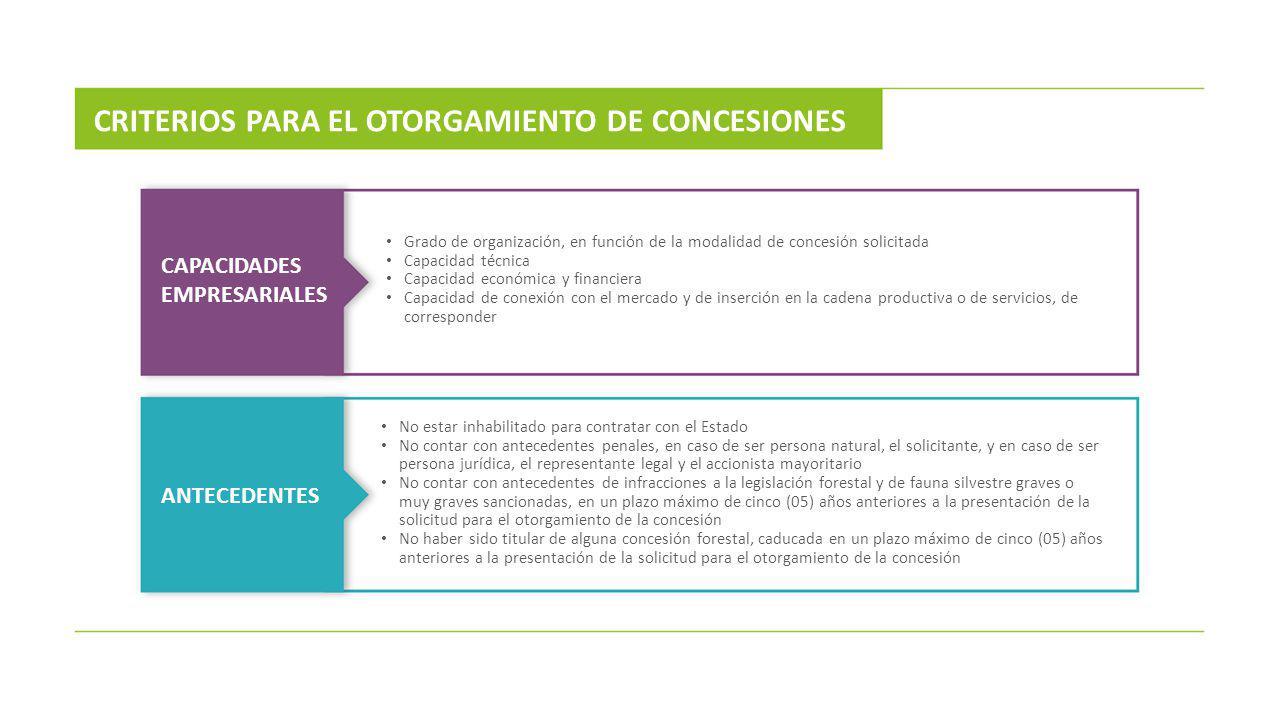 CRITERIOS PARA EL OTORGAMIENTO DE CONCESIONES CAPACIDADES EMPRESARIALES ANTECEDENTES Grado de organización, en función de la modalidad de concesión so