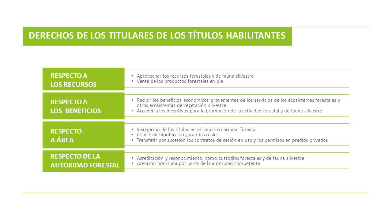 DERECHOS DE LOS TITULARES DE LOS TÍTULOS HABILITANTES RESPECTO A LOS RECURSOS RESPECTO A LOS BENEFICIOS RESPECTO A ÁREA RESPECTO DE LA AUTORIDAD FORES