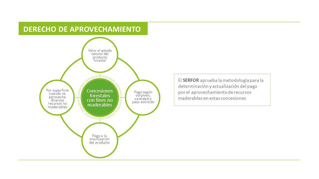 El SERFOR aprueba la metodología para la determinación y actualización del pago por el aprovechamiento de recursos maderables en estas concesiones DER
