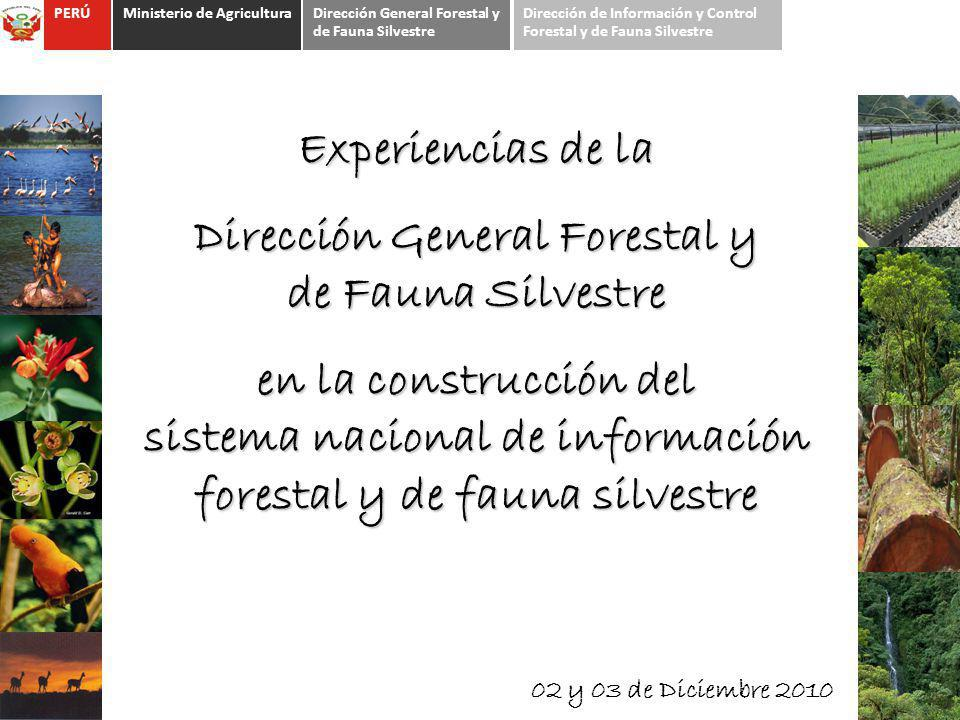 Experiencias de la Dirección General Forestal y de Fauna Silvestre en la construcción del sistema nacional de información forestal y de fauna silvestr