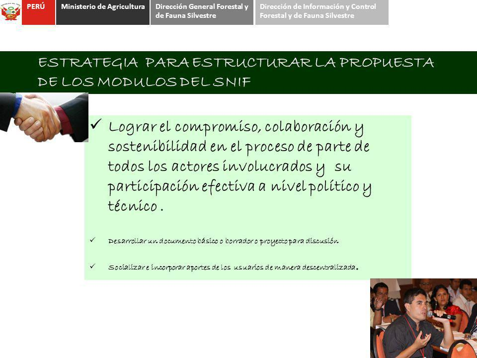 ESTRATEGIA PARA ESTRUCTURAR LA PROPUESTA DE LOS MODULOS DEL SNIF Lograr el compromiso, colaboración y sostenibilidad en el proceso de parte de todos l