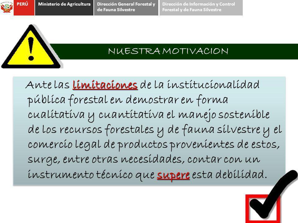 NUESTRA MOTIVACION limitaciones supere Ante las limitaciones de la institucionalidad pública forestal en demostrar en forma cualitativa y cuantitativa