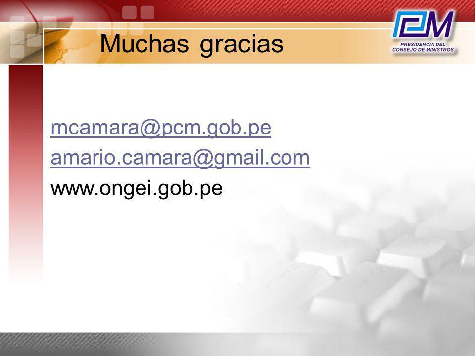 Muchas gracias mcamara@pcm.gob.pe amario.camara@gmail.com www.ongei.gob.pe