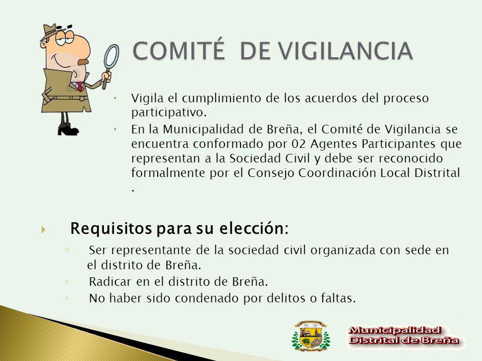 Vigila el cumplimiento de los acuerdos del proceso participativo.
