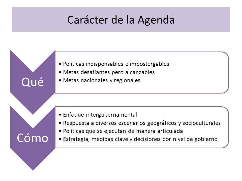 Carácter de la Agenda Qué Políticas indispensables e impostergables Metas desafiantes pero alcanzables Metas nacionales y regionales Cómo Enfoque intergubernamental Respuesta a diversos escenarios geográficos y socioculturales Políticas que se ejecutan de manera articulada Estrategia, medidas clave y decisiones por nivel de gobierno