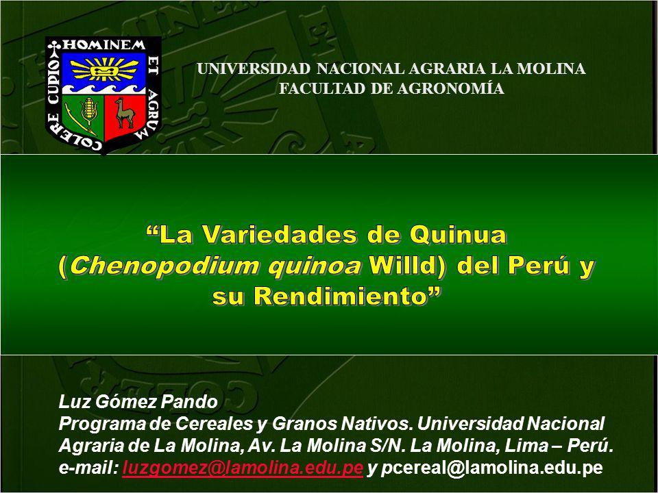 UNIVERSIDAD NACIONAL AGRARIA LA MOLINA FACULTAD DE AGRONOMÍA Luz Gómez Pando Programa de Cereales y Granos Nativos. Universidad Nacional Agraria de La