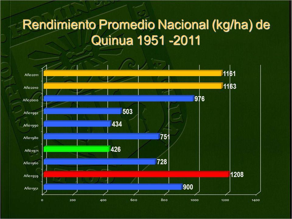 Rendimiento de quinua (kg/ha) campaña 2011 Rendimiento kg/ha Nacional1161 Huancavelica910 Arequipa2034 Ayacucho740 Junín1246 Cusco963 Puno1198