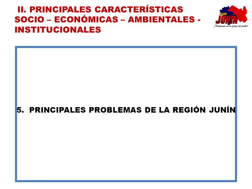 5.PRINCIPALES PROBLEMAS DE LA REGIÓN JUNÍN II. PRINCIPALES CARACTERÍSTICAS SOCIO – ECONÓMICAS – AMBIENTALES - INSTITUCIONALES