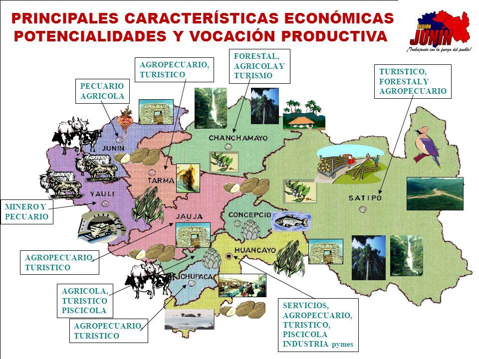 MINERO Y PECUARIO AGRICOLA FORESTAL, AGRICOLA Y TURISMO TURISTICO, FORESTAL Y AGROPECUARIO AGROPECUARIO, TURISTICO AGRICOLA, TURISTICO PISCICOLA AGROP
