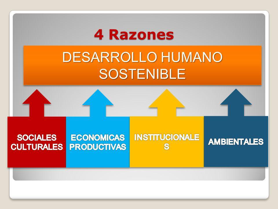 4 Razones DESARROLLO HUMANO SOSTENIBLE