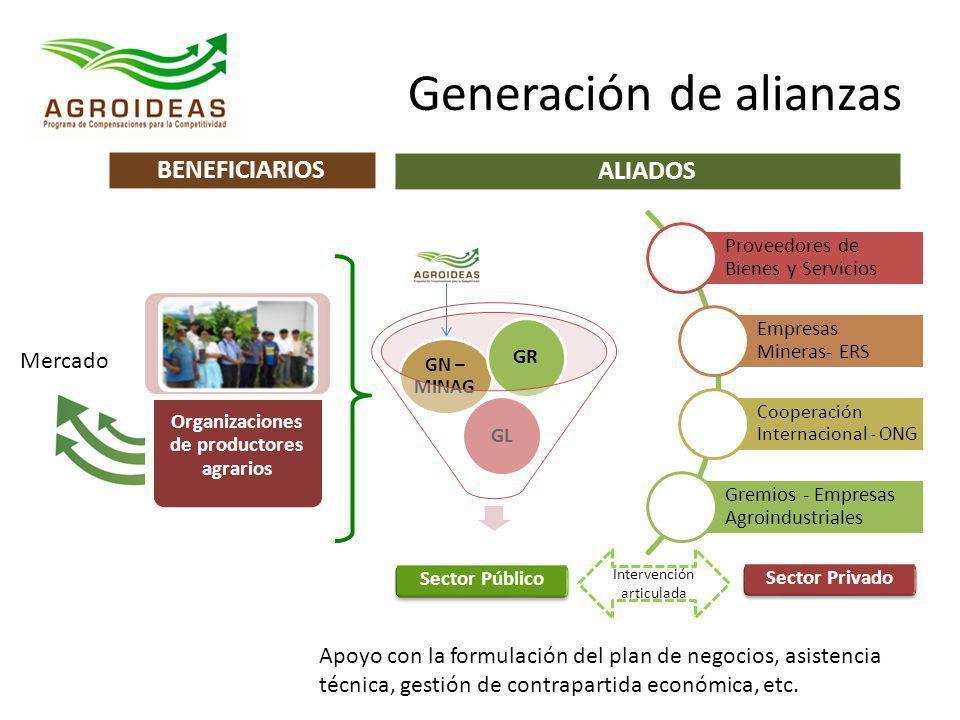 Generación de alianzas Apoyo con la formulación del plan de negocios, asistencia técnica, gestión de contrapartida económica, etc. Sector Público Sect