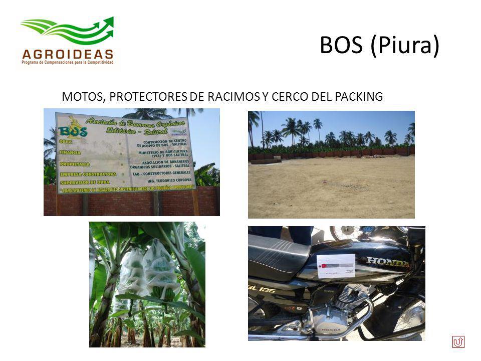 BOS (Piura) MOTOS, PROTECTORES DE RACIMOS Y CERCO DEL PACKING