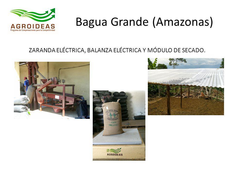 Bagua Grande (Amazonas) ZARANDA ELÉCTRICA, BALANZA ELÉCTRICA Y MÓDULO DE SECADO.