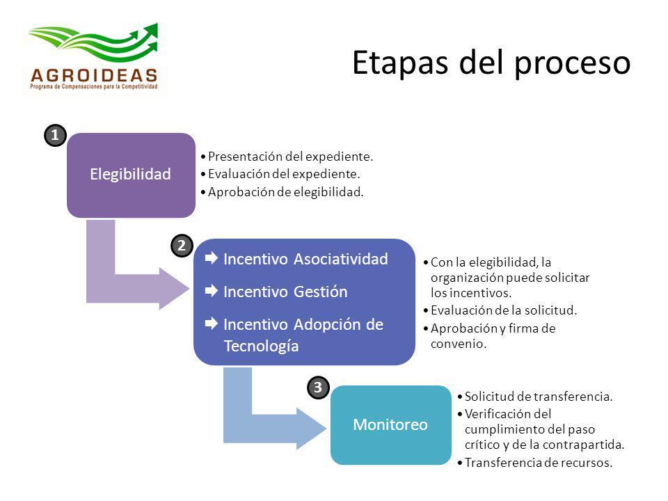 Elegibilidad Presentación del expediente. Evaluación del expediente. Aprobación de elegibilidad. Incentivo Asociatividad Incentivo Gestión Incentivo A