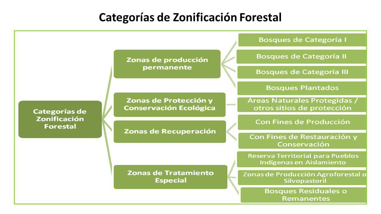 Categorías de Zonificación Forestal
