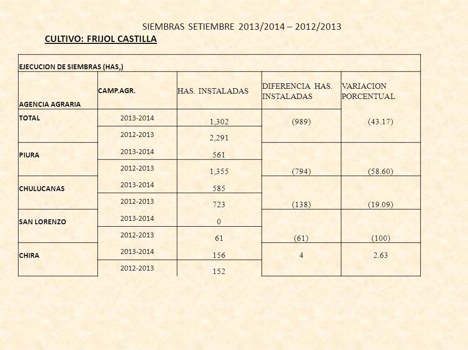 SIEMBRAS SETIEMBRE 2013/2014 – 2012/2013 CULTIVO: FRIJOL CASTILLA EJECUCION DE SIEMBRAS (HAS,) AGENCIA AGRARIA CAMP.AGR.