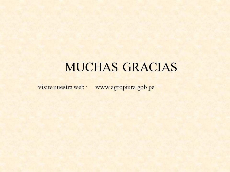MUCHAS GRACIAS visite nuestra web : www.agropiura.gob.pe