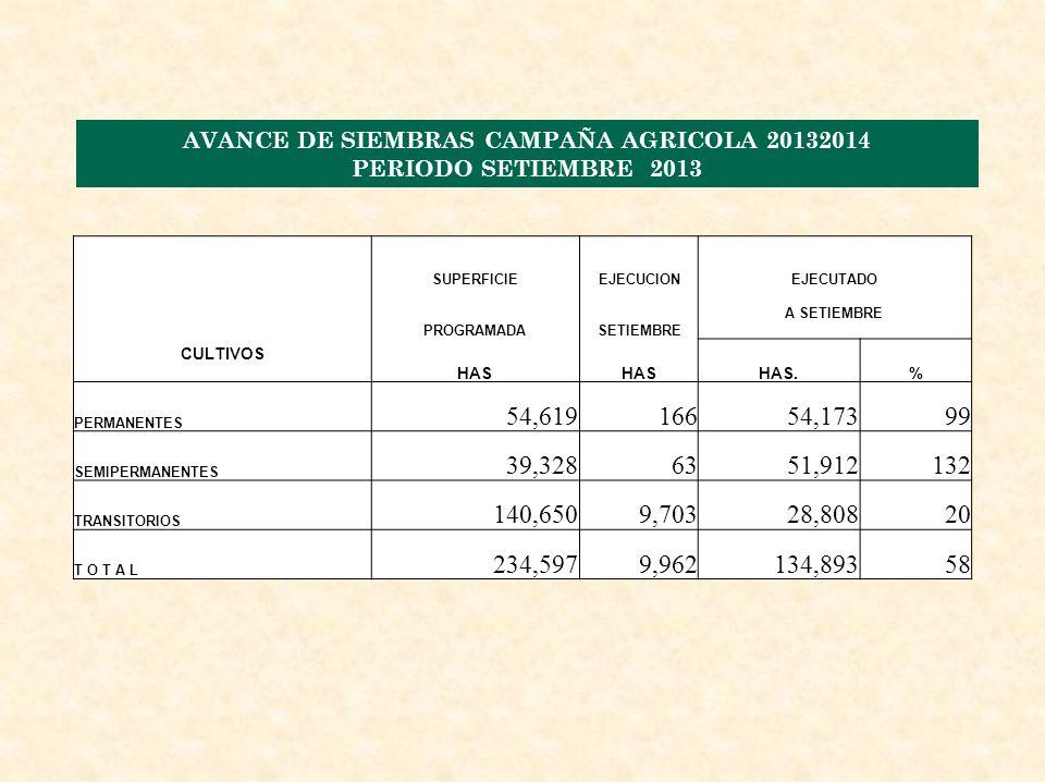AVANCE DE SIEMBRAS CAMPAÑA AGRICOLA 20132014 PERIODO SETIEMBRE 2013 CULTIVOS SUPERFICIEEJECUCIONEJECUTADO PROGRAMADASETIEMBRE A SETIEMBRE HAS HAS.% PERMANENTES 54,61916654,17399 SEMIPERMANENTES 39,3286351,912132 TRANSITORIOS 140,6509,70328,80820 T O T A L 234,5979,962134,89358
