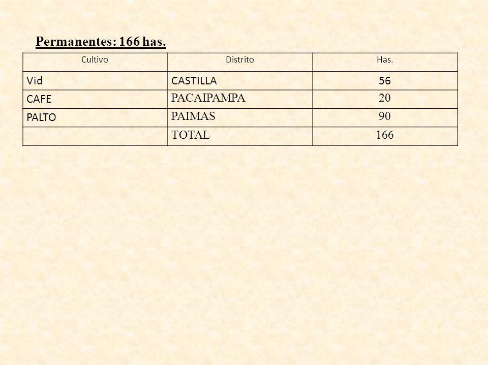 CultivoDistritoHas. VidCASTILLA56 CAFE PACAIPAMPA20 PALTO PAIMAS90 TOTAL166 Permanentes: 166 has.