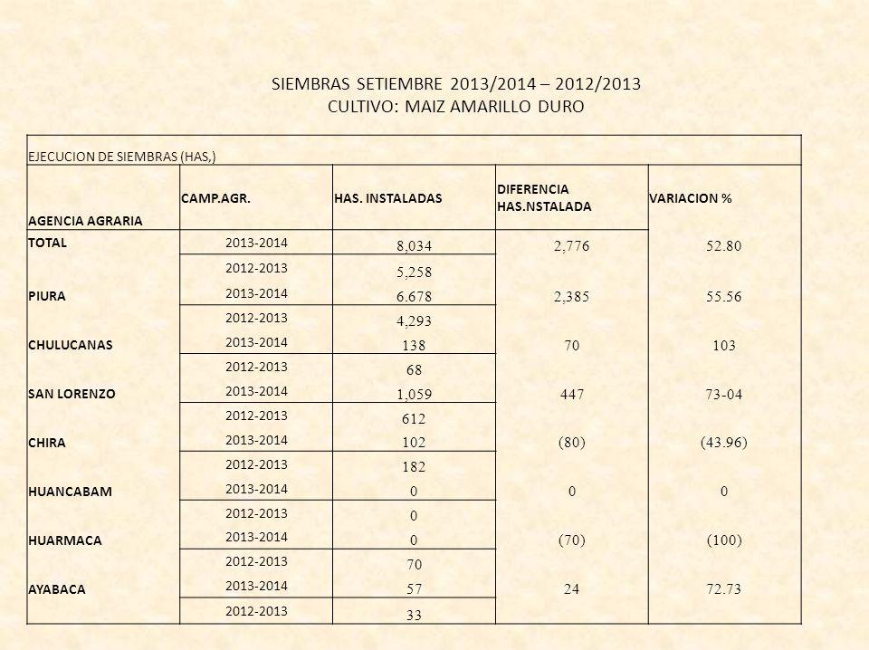 SIEMBRAS SETIEMBRE 2013/2014 – 2012/2013 CULTIVO: MAIZ AMARILLO DURO EJECUCION DE SIEMBRAS (HAS,) AGENCIA AGRARIA CAMP.AGR.HAS.