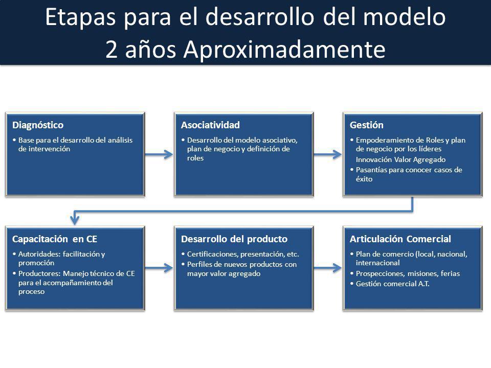 Etapas para el desarrollo del modelo 2 años Aproximadamente Diagnóstico Base para el desarrollo del análisis de intervención Asociatividad Desarrollo