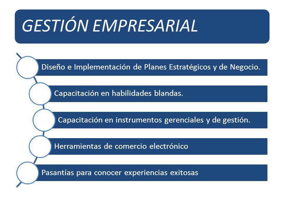 GESTIÓN EMPRESARIAL Diseño e Implementación de Planes Estratégicos y de Negocio. Capacitación en habilidades blandas. Capacitación en instrumentos ger