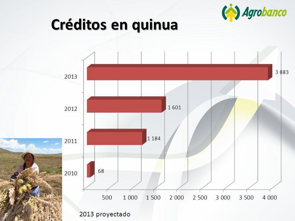 Créditos en quinua 2013 proyectado