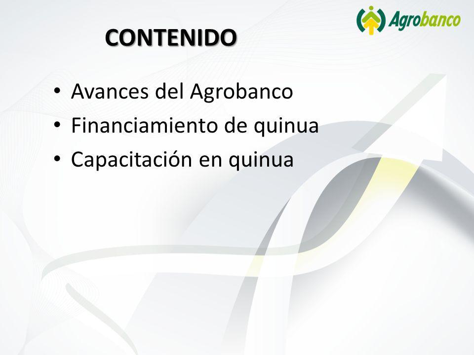CONTENIDO Avances del Agrobanco Financiamiento de quinua Capacitación en quinua