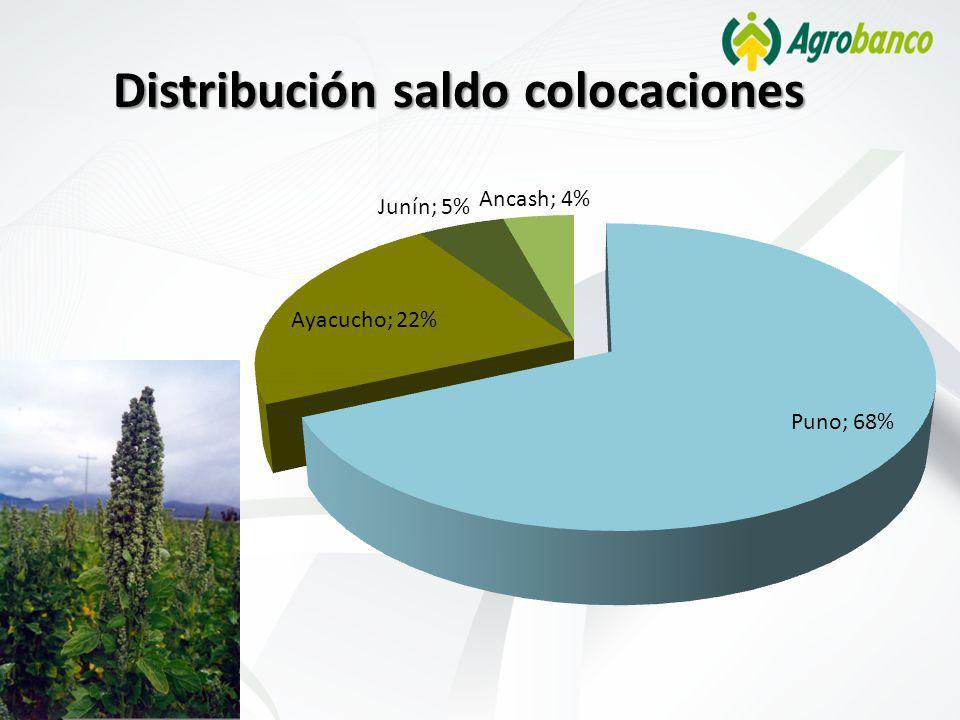 Distribución saldo colocaciones