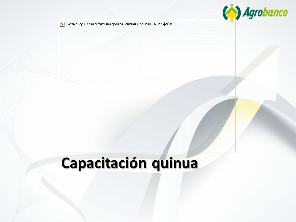 Capacitación quinua