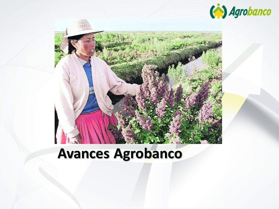 Avances Agrobanco