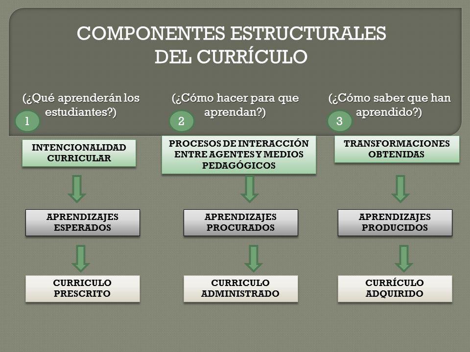 COMPONENTES ESTRUCTURALES DEL CURRÍCULO (¿Qué aprenderán los estudiantes?) (¿Cómo hacer para que aprendan?) (¿Cómo saber que han aprendido?) INTENCION