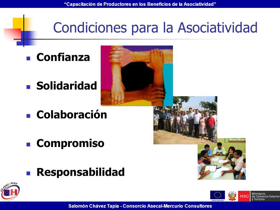 Capacitación de Productores en los Beneficios de la Asociatividad Salomón Chávez Tapia - Consorcio Asecal-Mercurio Consultores Condiciones para la Aso