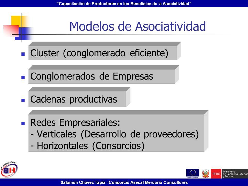 Capacitación de Productores en los Beneficios de la Asociatividad Salomón Chávez Tapia - Consorcio Asecal-Mercurio Consultores Cluster (conglomerado e