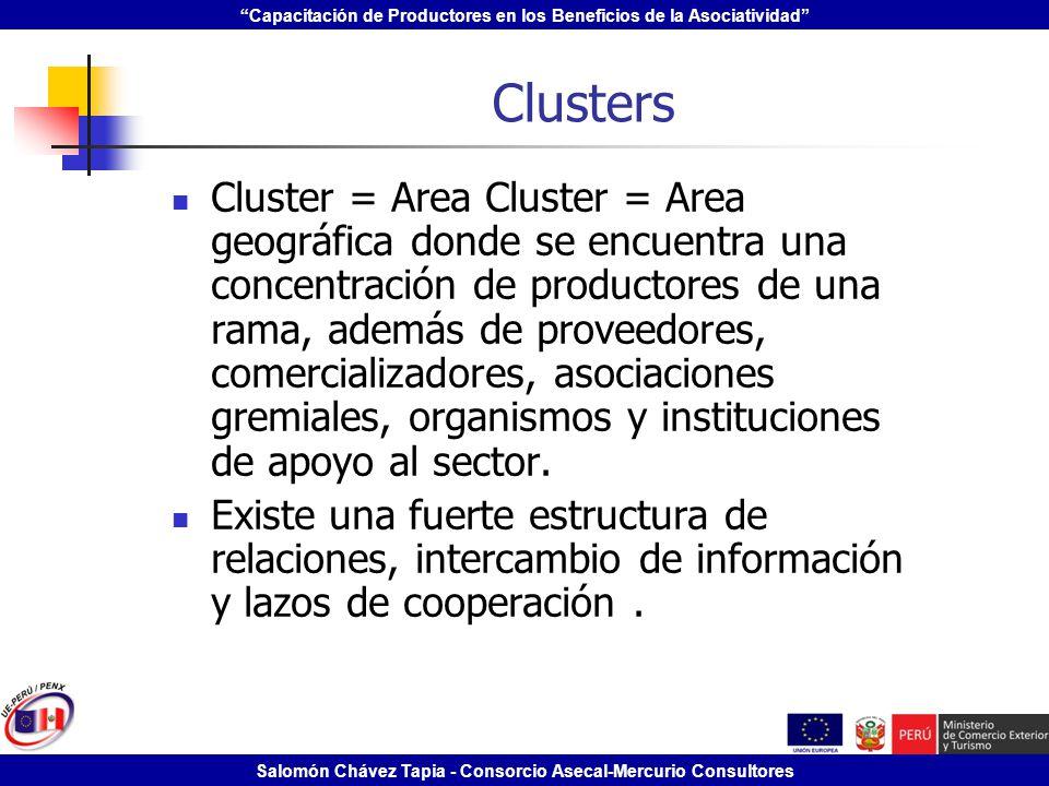 Capacitación de Productores en los Beneficios de la Asociatividad Salomón Chávez Tapia - Consorcio Asecal-Mercurio Consultores Clusters Cluster = Area