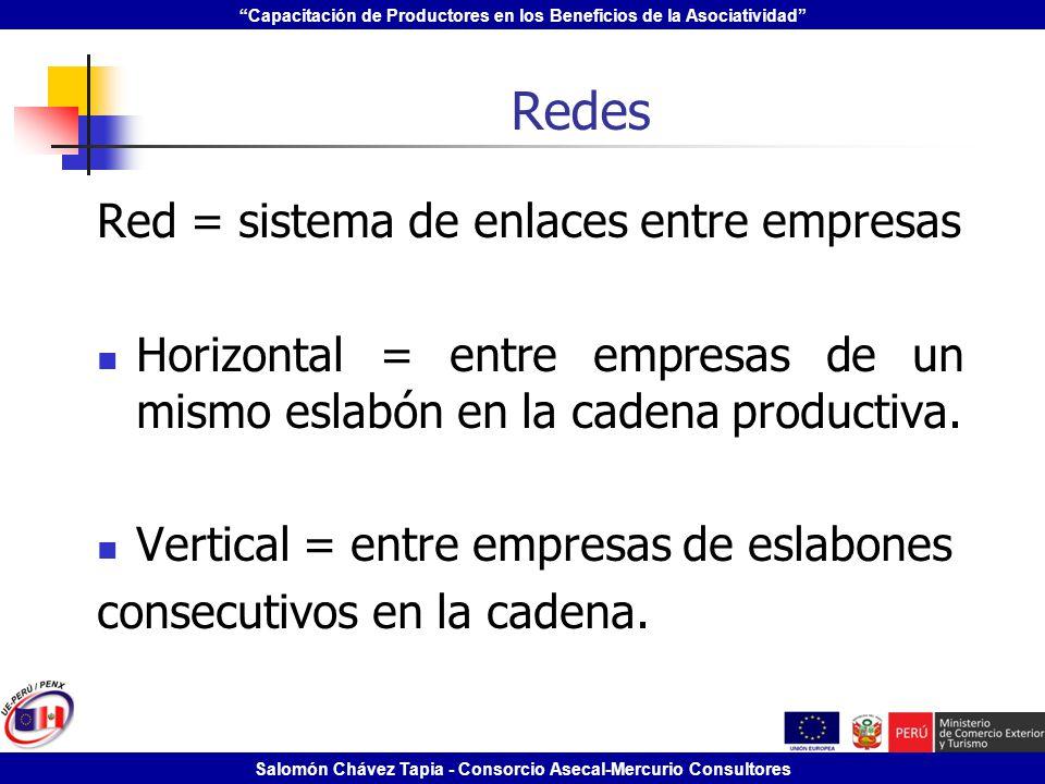 Capacitación de Productores en los Beneficios de la Asociatividad Salomón Chávez Tapia - Consorcio Asecal-Mercurio Consultores Redes Red = sistema de