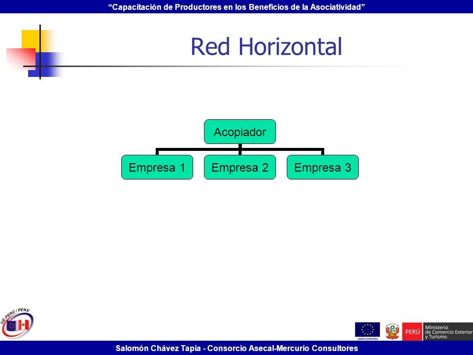 Capacitación de Productores en los Beneficios de la Asociatividad Salomón Chávez Tapia - Consorcio Asecal-Mercurio Consultores Red Horizontal Acopiado