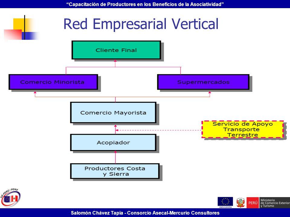 Capacitación de Productores en los Beneficios de la Asociatividad Salomón Chávez Tapia - Consorcio Asecal-Mercurio Consultores Red Empresarial Vertica