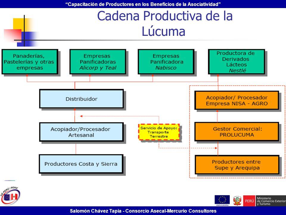 Capacitación de Productores en los Beneficios de la Asociatividad Salomón Chávez Tapia - Consorcio Asecal-Mercurio Consultores Cadena Productiva de la