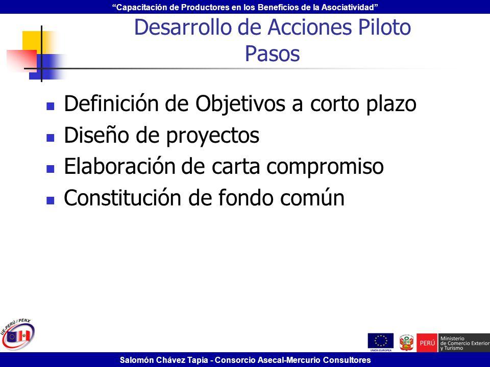 Capacitación de Productores en los Beneficios de la Asociatividad Salomón Chávez Tapia - Consorcio Asecal-Mercurio Consultores Desarrollo de Acciones