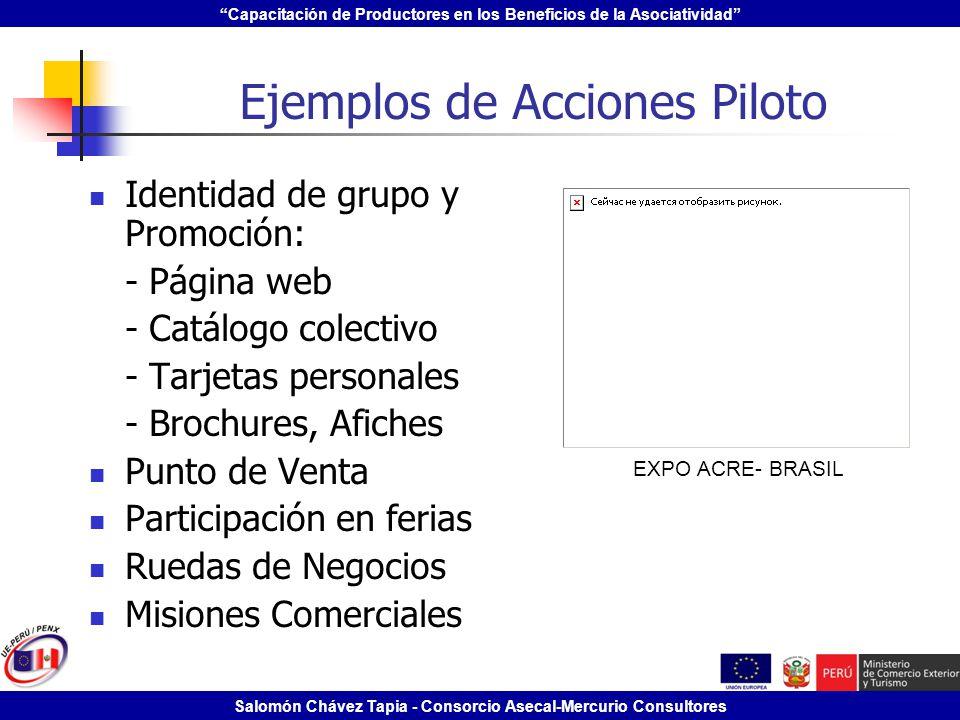 Capacitación de Productores en los Beneficios de la Asociatividad Salomón Chávez Tapia - Consorcio Asecal-Mercurio Consultores Ejemplos de Acciones Pi