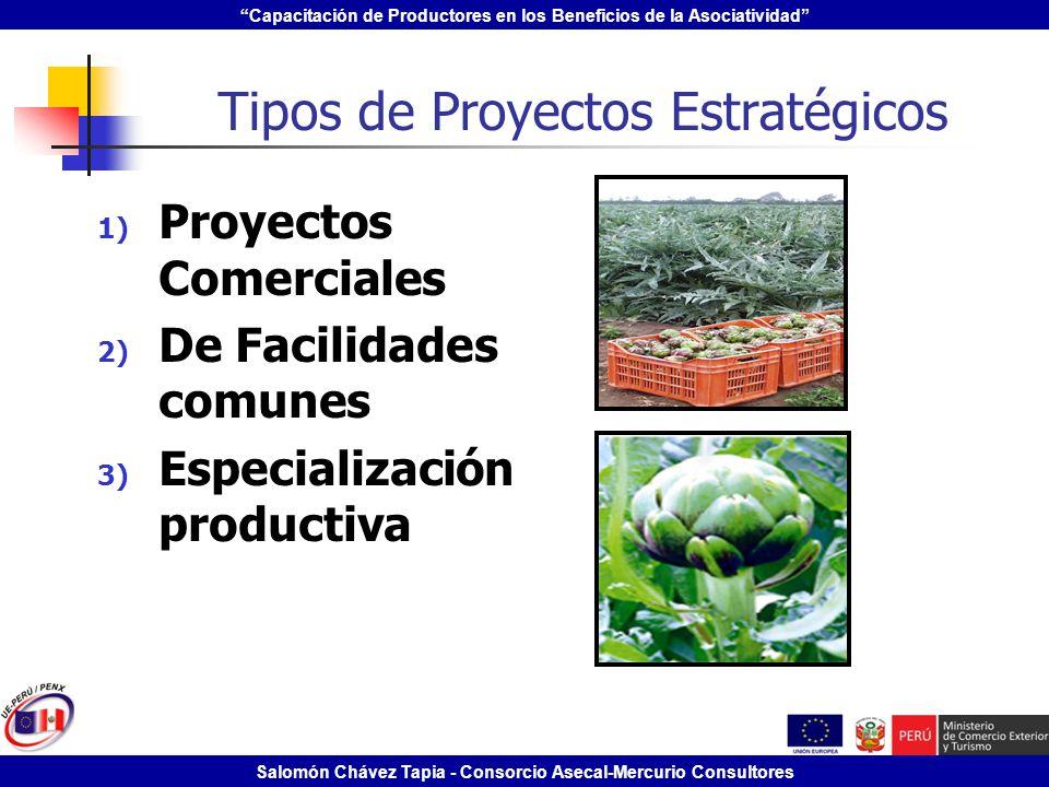 Capacitación de Productores en los Beneficios de la Asociatividad Salomón Chávez Tapia - Consorcio Asecal-Mercurio Consultores Tipos de Proyectos Estr