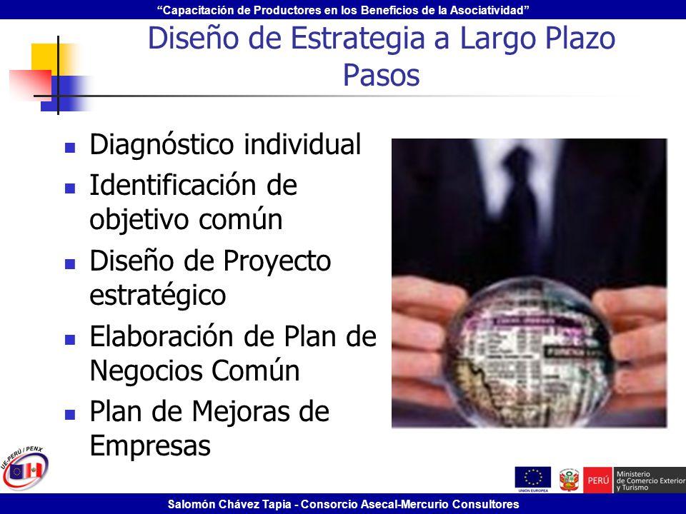 Capacitación de Productores en los Beneficios de la Asociatividad Salomón Chávez Tapia - Consorcio Asecal-Mercurio Consultores Diseño de Estrategia a